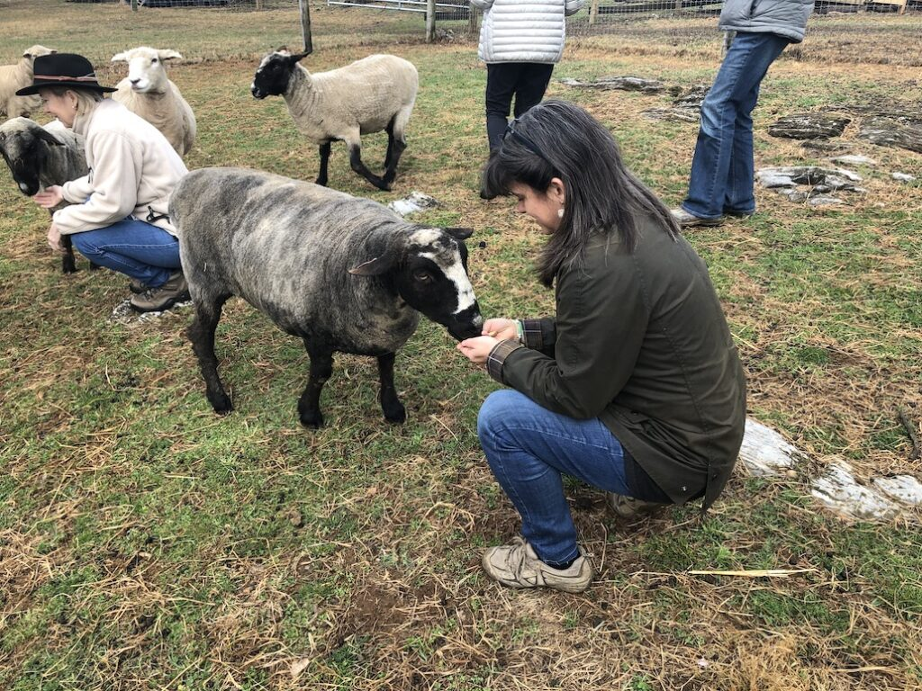 Rebecca visits Mulberry Hill Farm in Carlisle PA
